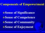 components of empowerment