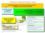 conditions for biomass energy in japan