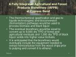 a fully integrated agricultural and forest products biorefinery iafpb at cypress bend