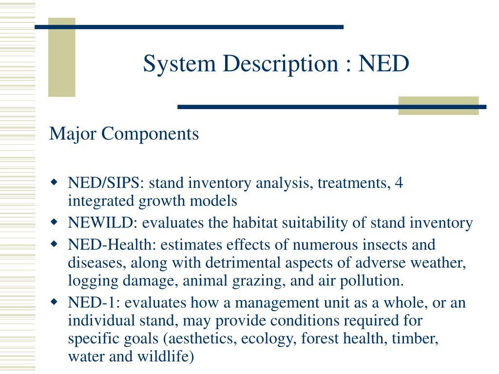 System Description : NED