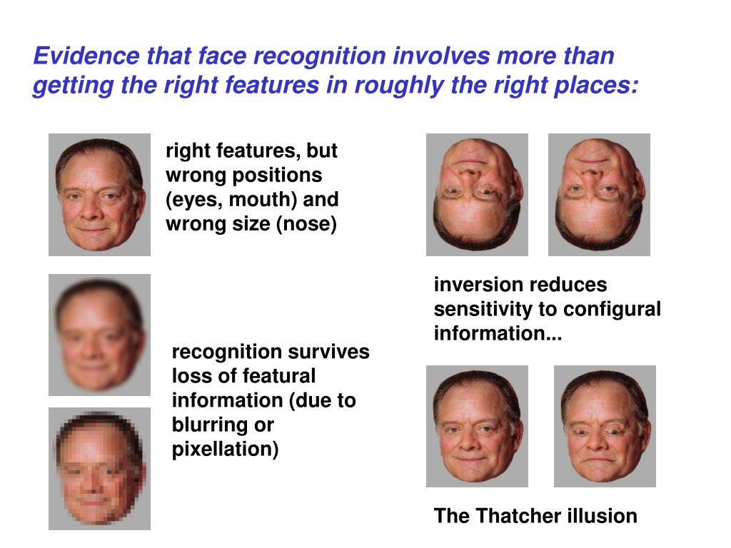 right features, but wrong positions (eyes, mouth) and wrong size (nose)