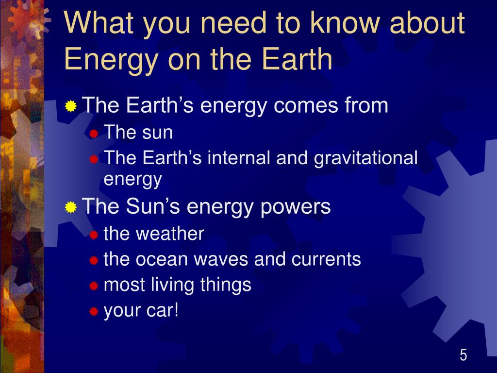 living things and the suns energy