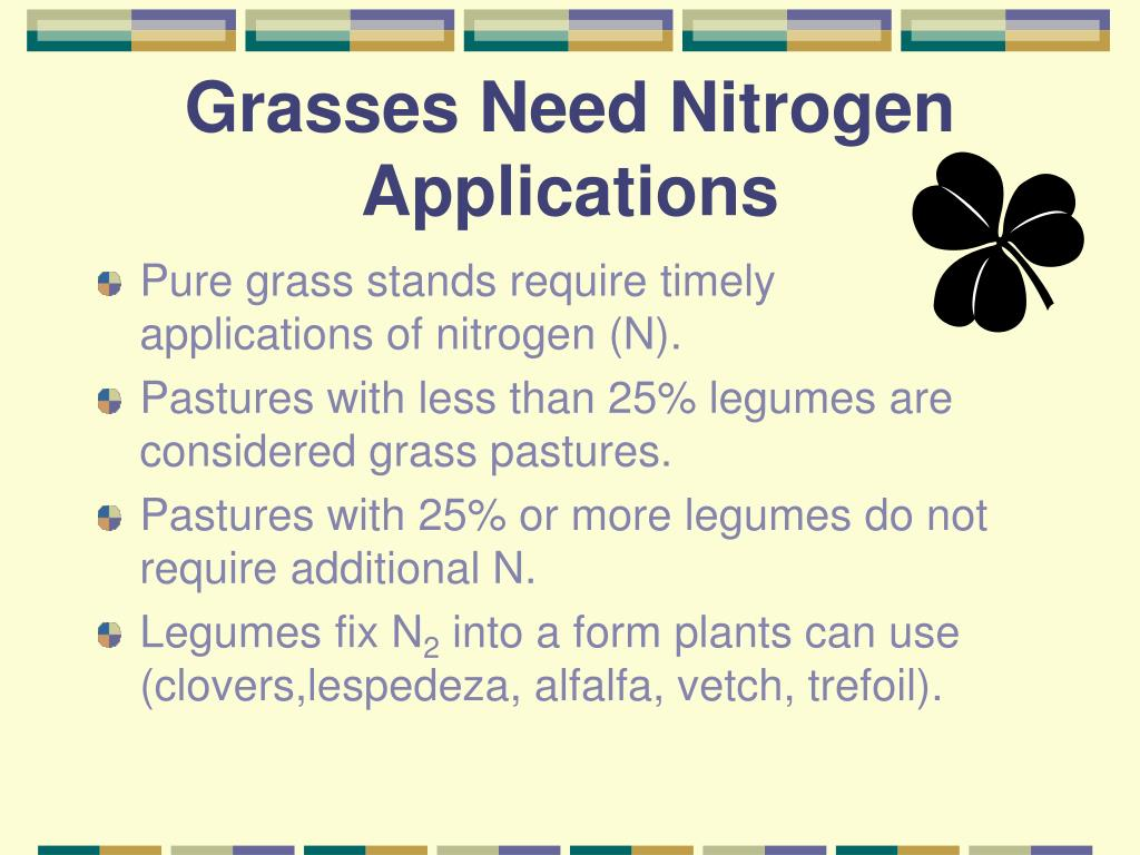 Grasses Need Nitrogen Applications