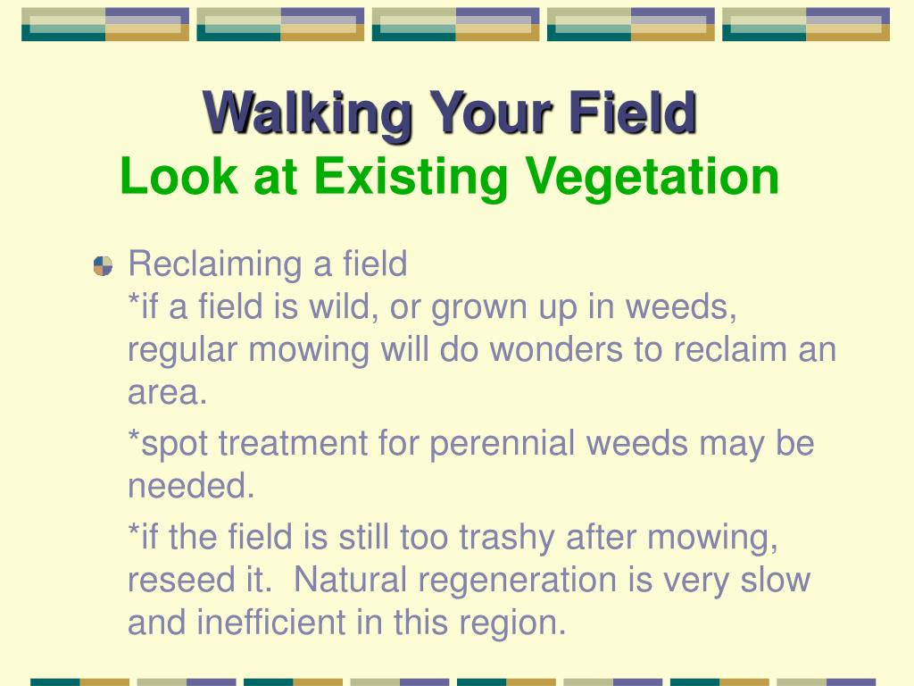 Walking Your Field