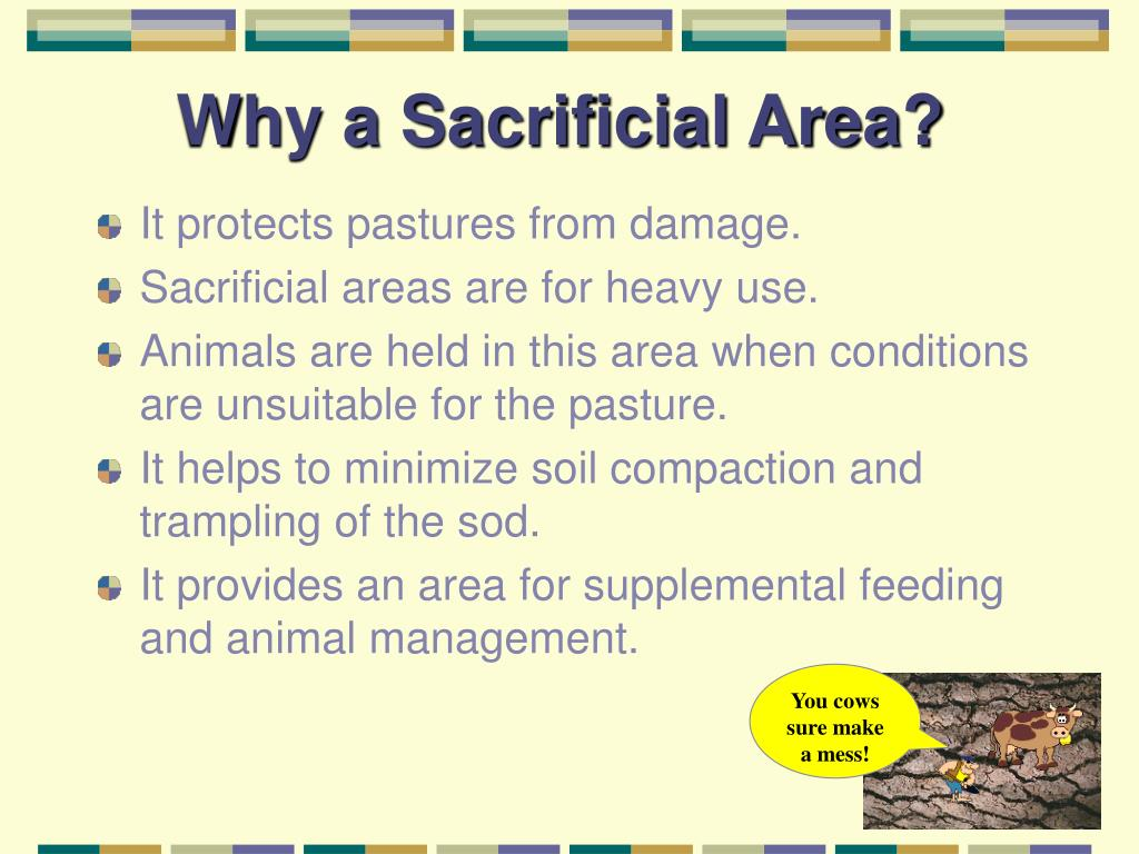 Why a Sacrificial Area?