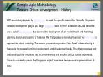 sample agile methodology feature driven development history