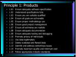 principle 1 products