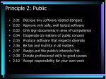 principle 2 public