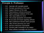 principle 6 profession