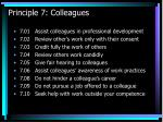 principle 7 colleagues