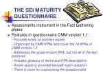the sei maturity questionnaire