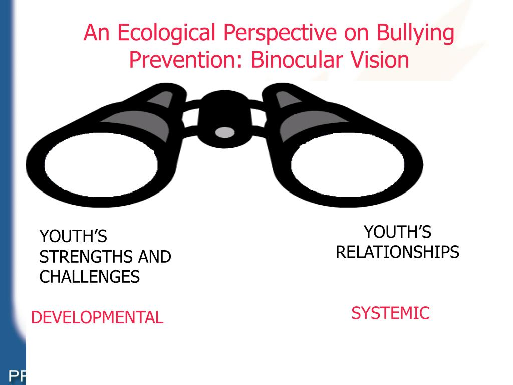An Ecological Perspective on Bullying Prevention: Binocular Vision