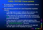 cobol picture clause symbols