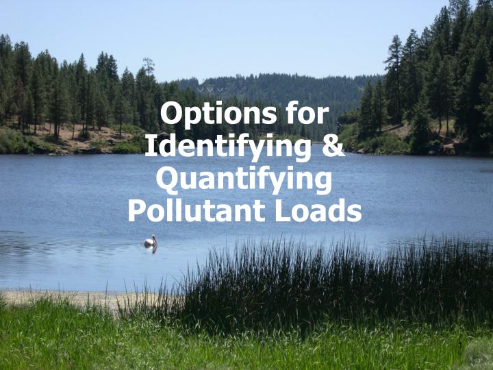 options for identifying quantifying pollutant loads n.