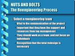 nuts and bolts the reengineering process