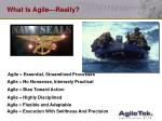 what is agile really