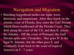 navigation and migration58