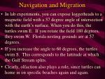 navigation and migration60
