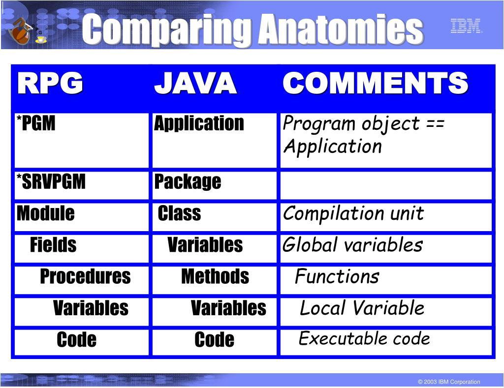 Comparing Anatomies