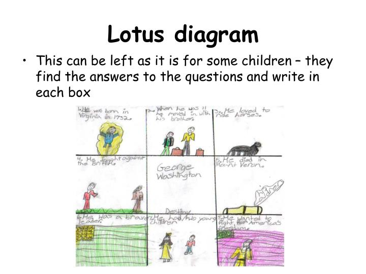 Ppt Lotus Diagram Powerpoint Presentation Id424094