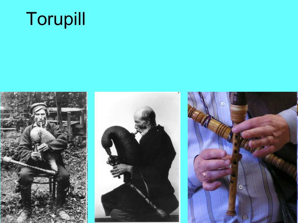 Torupill
