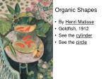 organic shapes7