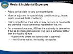 meals incidental expenses