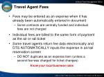 travel agent fees