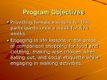 program objectives29