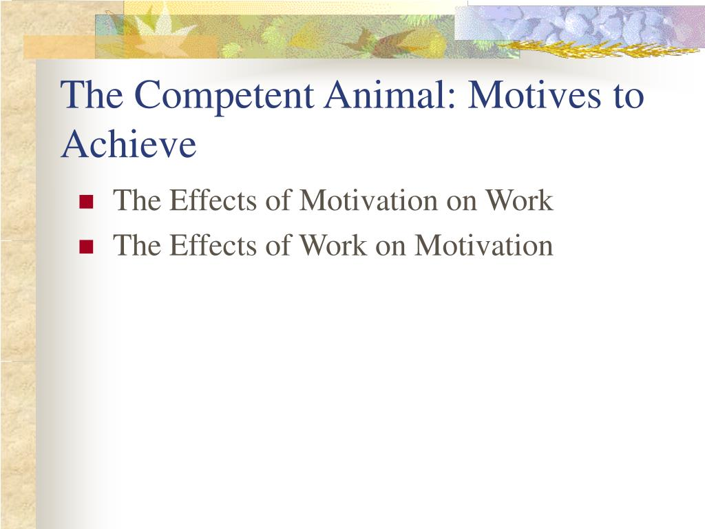The Competent Animal: Motives to Achieve