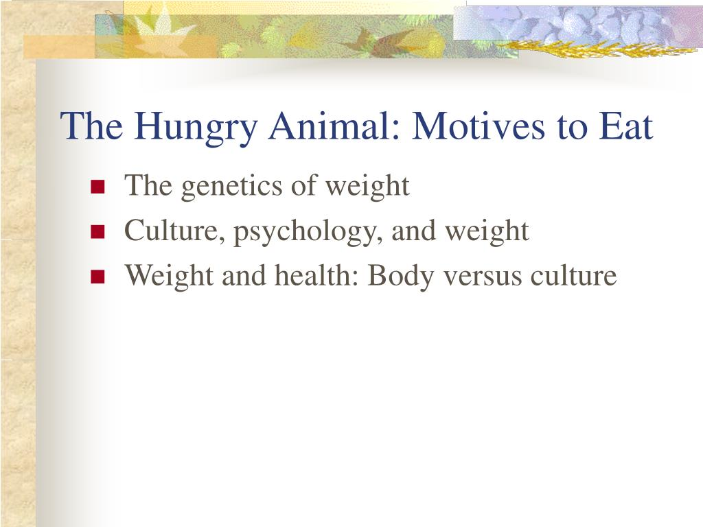 The Hungry Animal: Motives to Eat