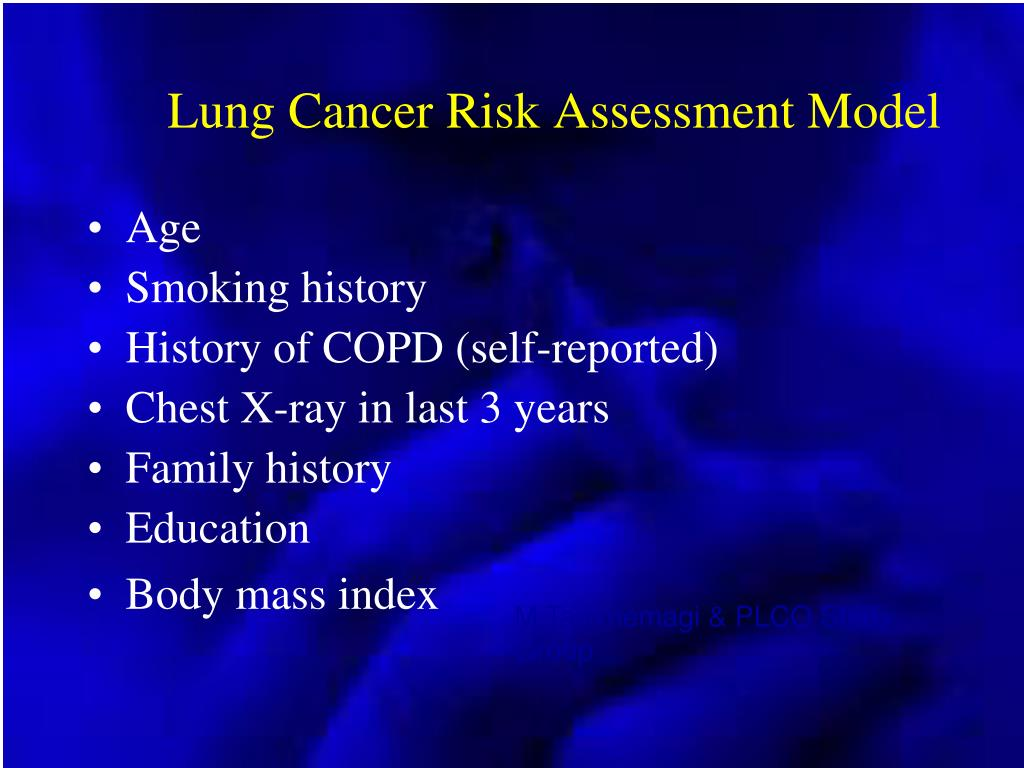 Lung Cancer Risk Assessment Model