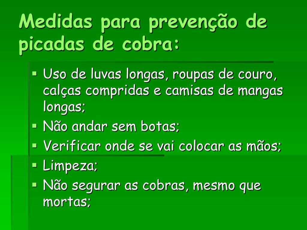 Medidas para prevenção de picadas de cobra: