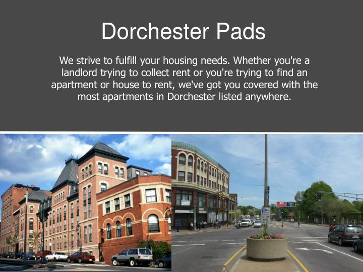 dorchester pads n.
