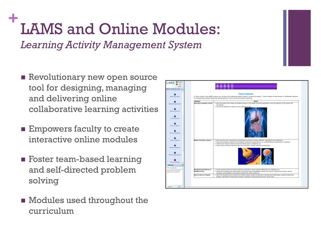 LAMS and Online Modules: