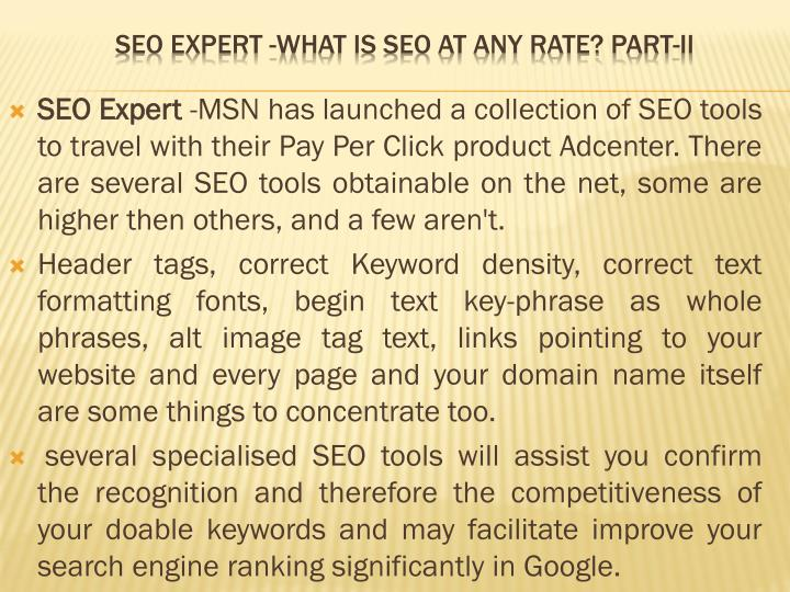 Seo expert what is seo at any rate part ii