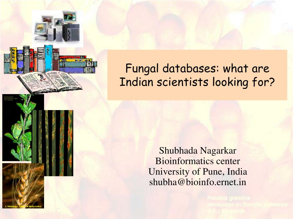 fungal databases what are indian scientists looking for l.