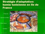 strat gie d adaptation kemia tunisienne en ile de france