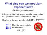 what else can we modular exponentiate