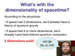 what s with the dimensionality of spacetime