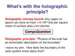 what s with the holographic principle