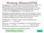 working memory stm