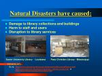 natural disasters have caused