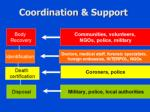 coordination support