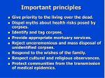 important principles