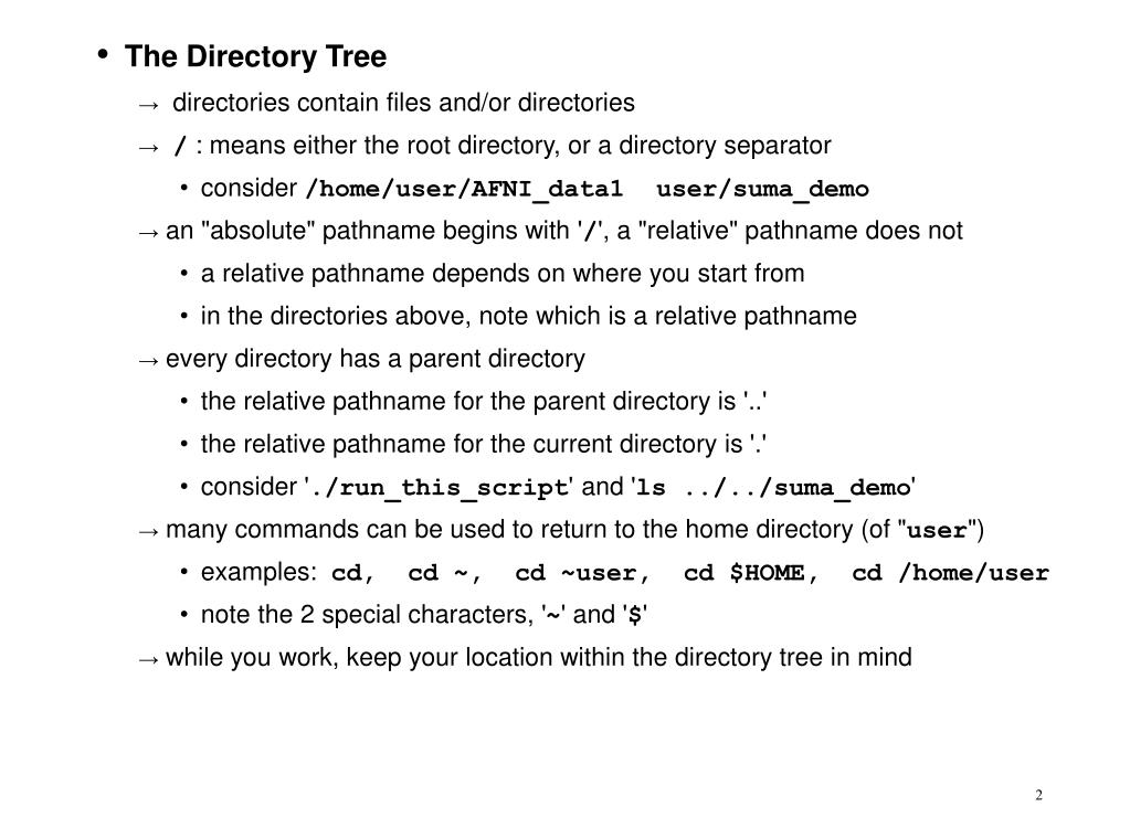 The Directory Tree