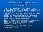 undps adaptation policy framework