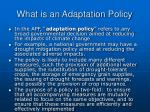 what is an adaptation policy