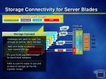 storage connectivity for server blades