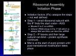 ribosomal assembly initiation phase